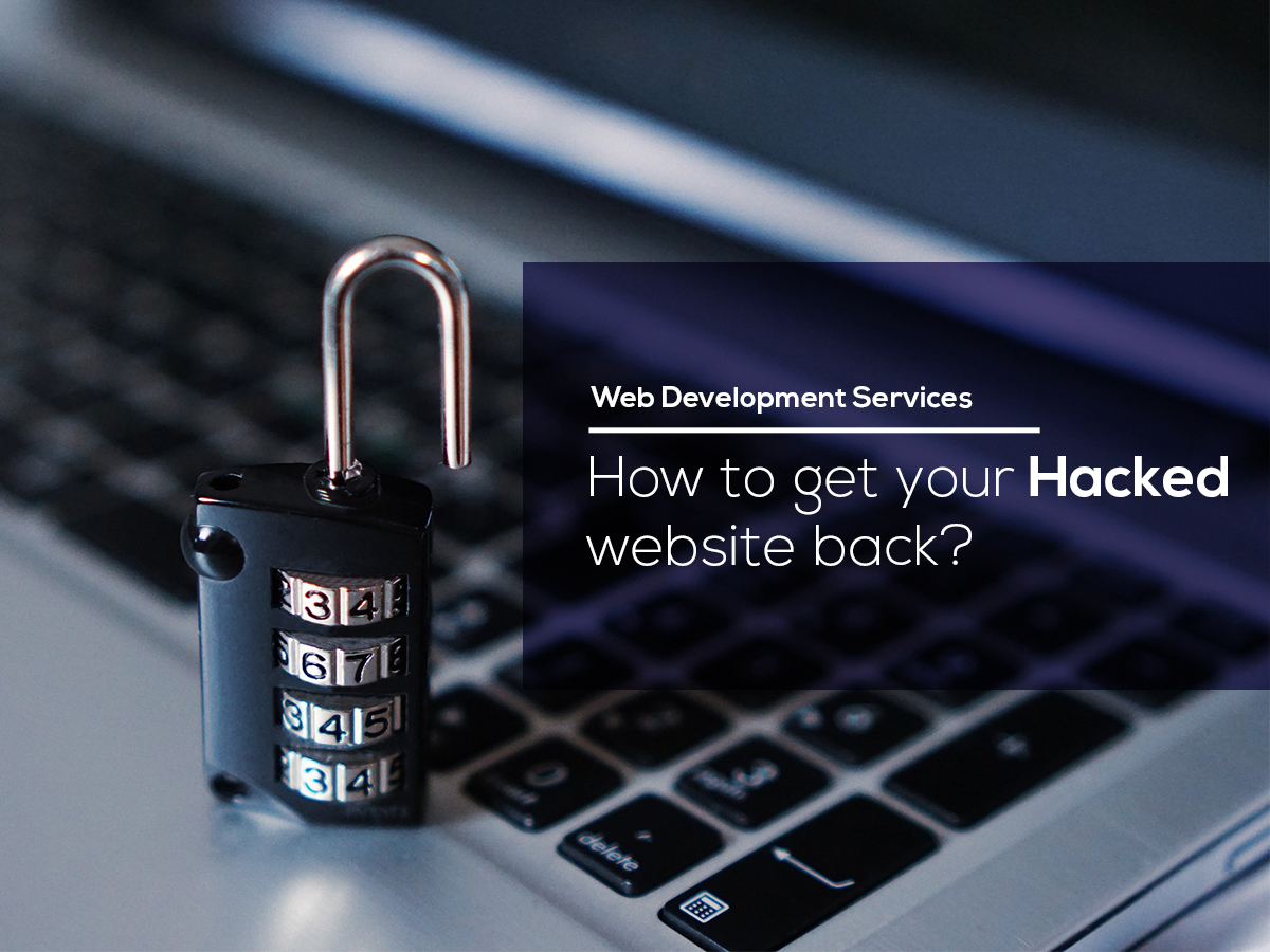 Web Development Services | How To Get Your Hacked Website Back
