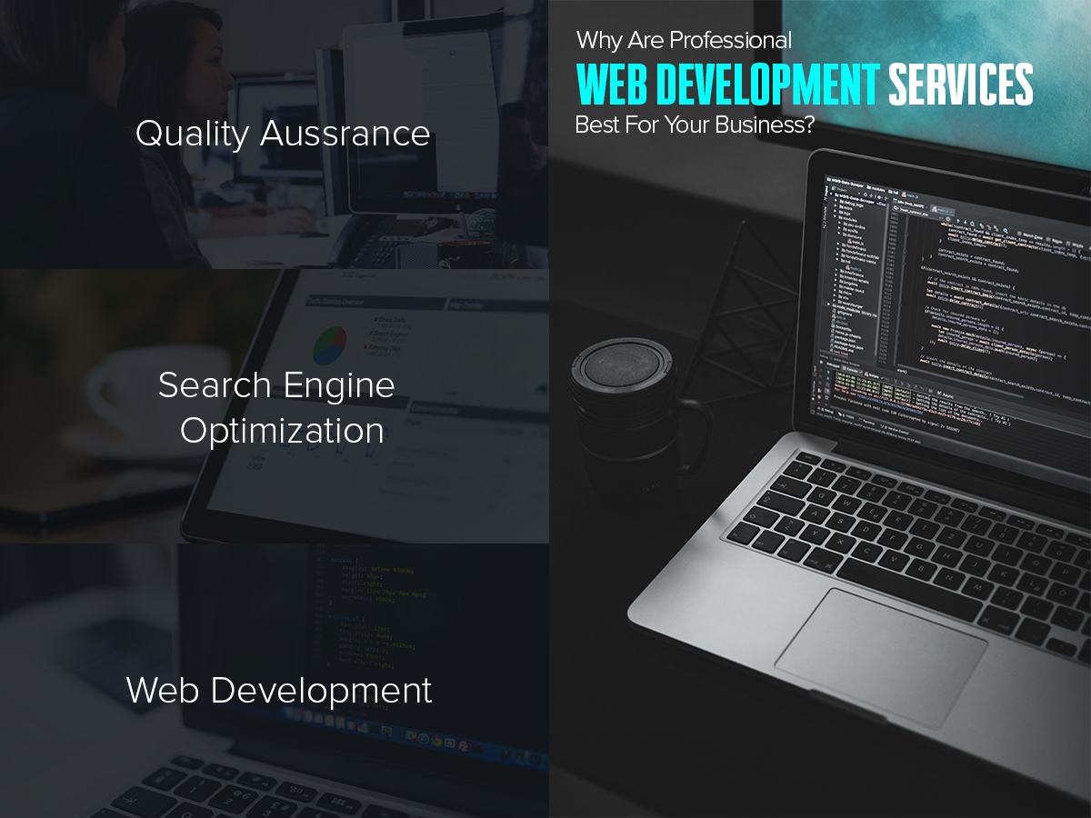 Why Are Professional Web Development Services Best For Your Business