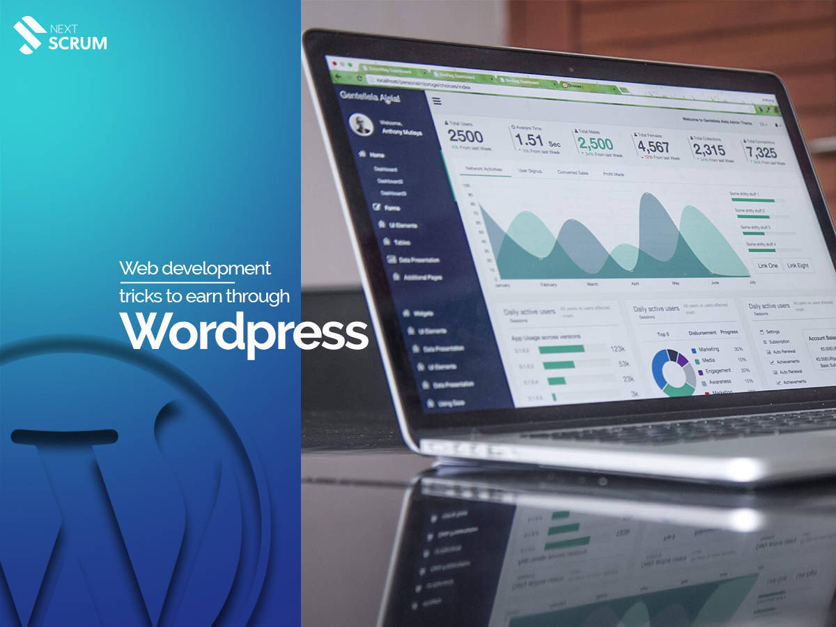 Web Development | Tricks to Earn Through WordPress